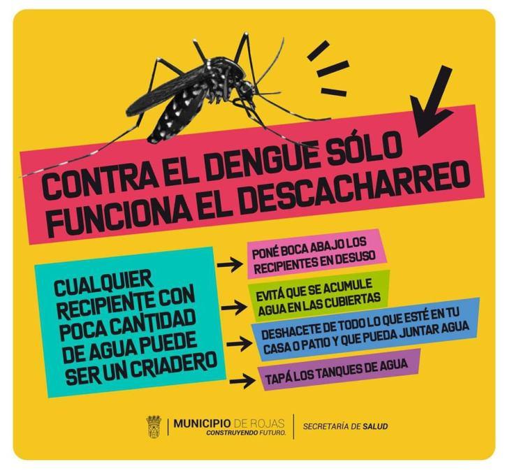 Dengue cuadro 1