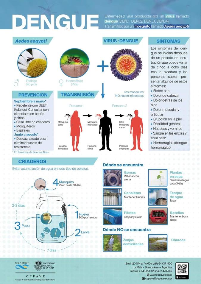 Dengue cuadro 3